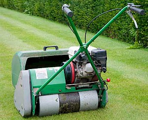 Quality Lawn Mowing and Treatment